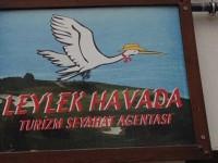 Eskişehir'de Bir Leylek… Hem De Havada!