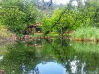 Doğayla İç İçe Yoga Kampı – Bölüm 1